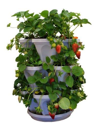 3 Tier Stackable Herb Garden Planter Set Vertical Container Pots For Herbs Strawberries Flowers
