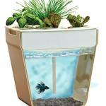 HOME-GROWN-PONICS-AquaFarm-96000-Self-Cleaning-Fish-Tank-3-gallon-available-1cs-0
