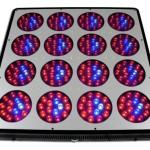 Lighthouse-Hydro-BlackStar-Chrome-Full-Spectrum-Flowering-LED-Grow-Light-720-watt-0