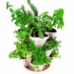 Mini-Garden-Stacker-StackableHangable-All-Season-Self-Watering-Planter-IndoorOutdoor-Stacking-Flower-Pot-Great-Gardening-Gift-Idea-Color-Stone-0